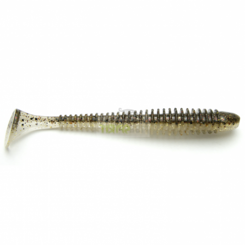 Gold Flash Minnow